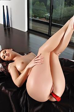 Karlie Montana Pussy Play